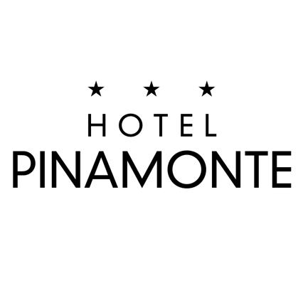 PINAMONTE